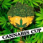 cannabis cup portland oregon 2015