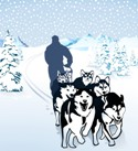 cs dog sled rides in alaska 7101601
