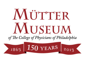 mutter museum things to do in pennsylvania