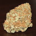 sublime_marijuana strain_125x125_mjlinks