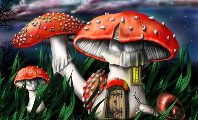 cs psilocybin magic mushrooms 9449671